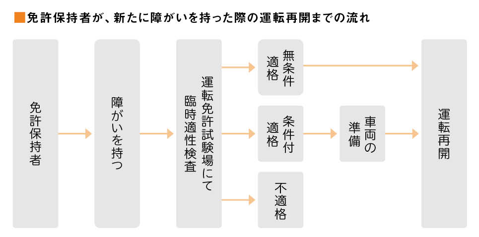 menkyo_koushin_drive_ver